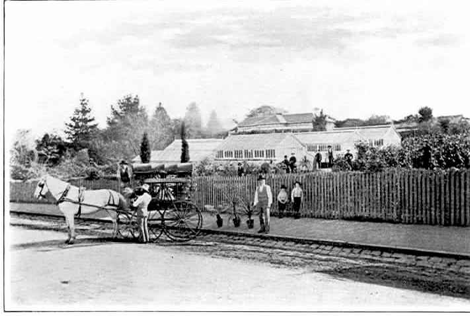 The nursery of Messrs Taylor & Sangster.  Pictured a number of glass-houses, plants, nursery workers and a one-horse dray loading with potted plants. Toorak Road in the foreground. Source: 'Early Toorak and district' by E.M. Robb, Melbourne: Robertson & Mullens, 1934, page 85